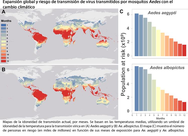 El cambio climático redistribuirá las arbovirosis